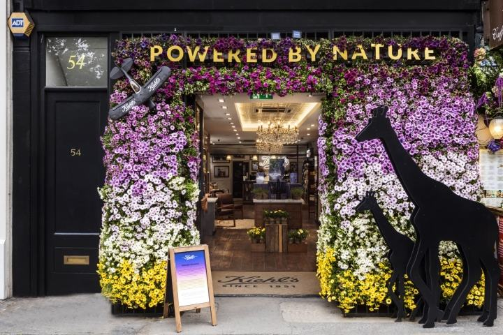 Kiehl-s-Floral-Safari-windows-by-Prop-Studios-London-UK